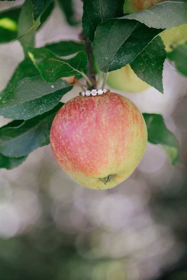 Engagement ring photo apple tree