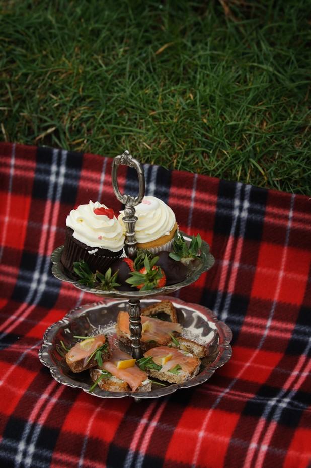 secret-proposal-picnic-howth-dublin23