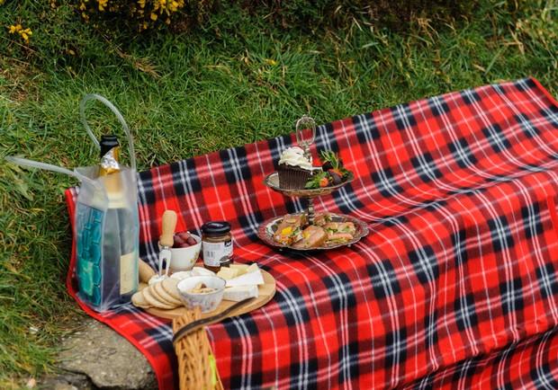 secret-proposal-picnic-howth-dublin6
