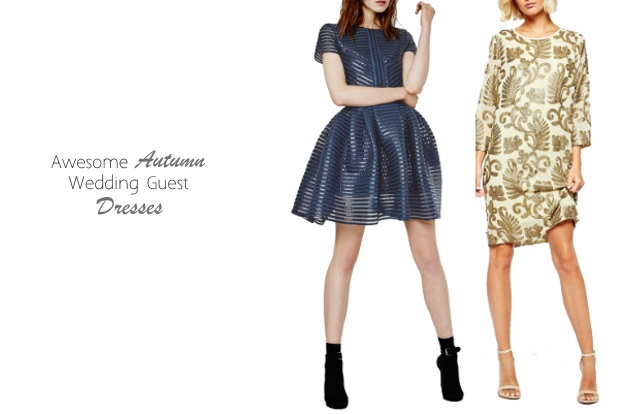 Autumn\'s Most Stylish Wedding Guest Dresses | weddingsonline