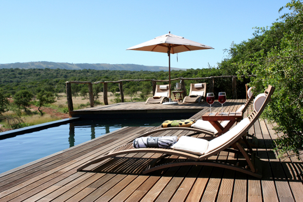 Bush-Lodge-Pool-pumba-private-game-reserve