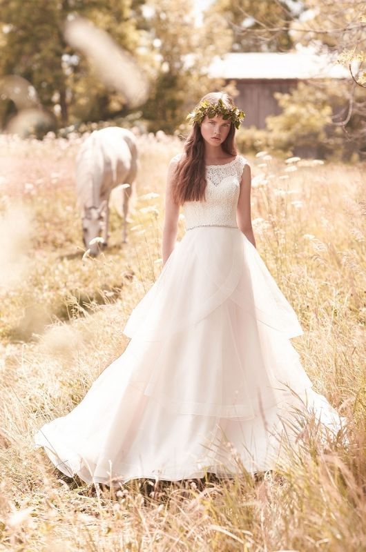 Plus Size Wedding Dresses Michigan 28 Images Rachal Allen