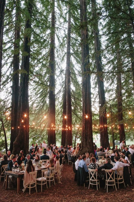 forest-theme-wedding-reception-tables-decor