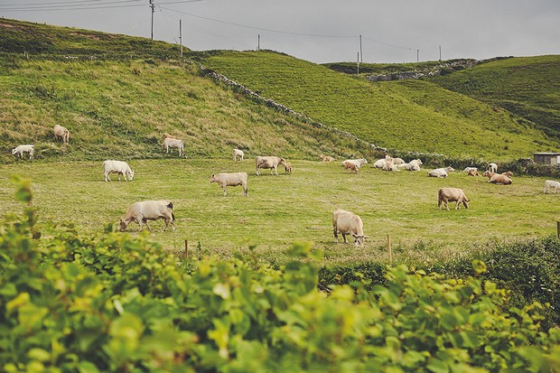 Traditional-Irish-Wedding-West-Coast-Clare-Emerald-Green-weddingsonline (5)