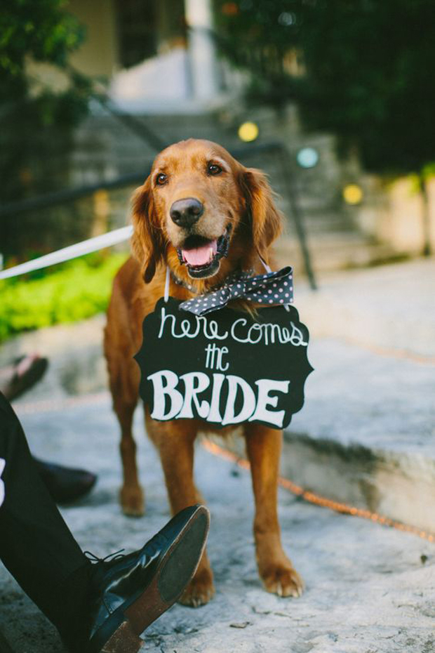 here-comes-the-bride-sign