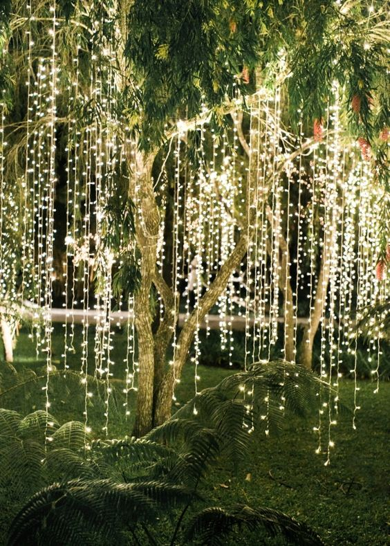 magical-strip-lighting-tree-wedding-ceremony-outdoor