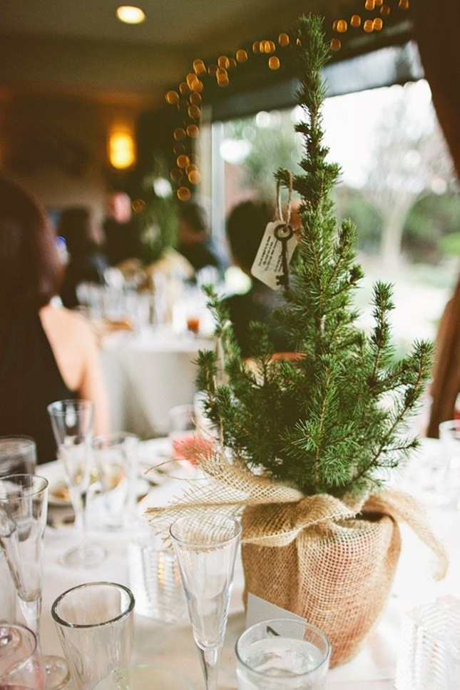 Mini-Pine-Tree-wishing-tree-christmas-wedding-ideas