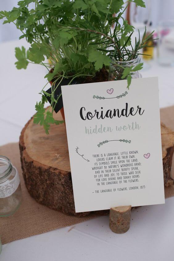 Wedding-table-name-ideas-herbs-coriandor-chef-gardener