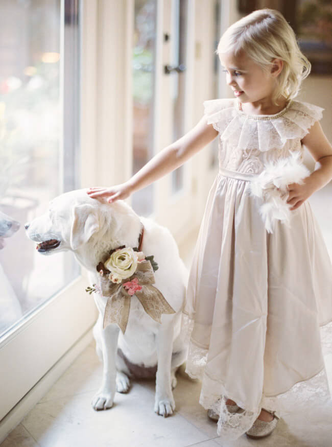 dog-flower-girl-wedding-photo