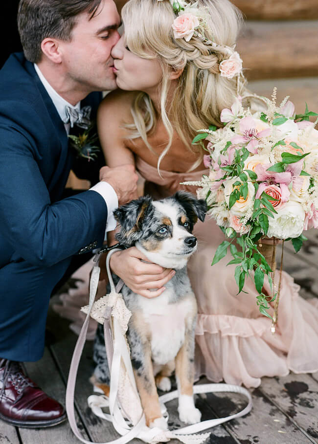 family-portrait-dog-wedding