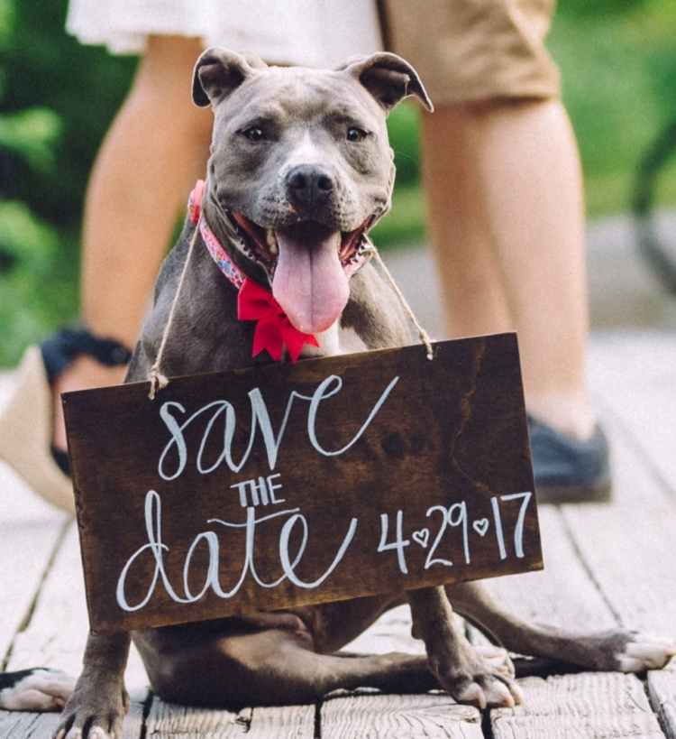 save-the-date-couple-dog-wedding-photo-etsy