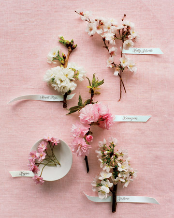 cherry blossoms on pinterest cherry blossom wedding cherry blossom